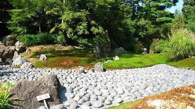 嵐山 天竜寺の塔頭 宝厳院(ほうごんいん)1461年聖仲永光禅師を開山に迎え、細川頼之によって創建され、創建時は上京区にありましたが、応仁の乱の時に兵火にあい焼失しました。その後幾多の変遷を経て現在地に移転再興されました。臨済宗 天龍寺派庭園拝観は、春3月下旬より5月下旬までと秋...