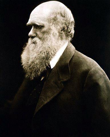 Julia Margaret Cameron's 1868 portrait of Charles Darwin.