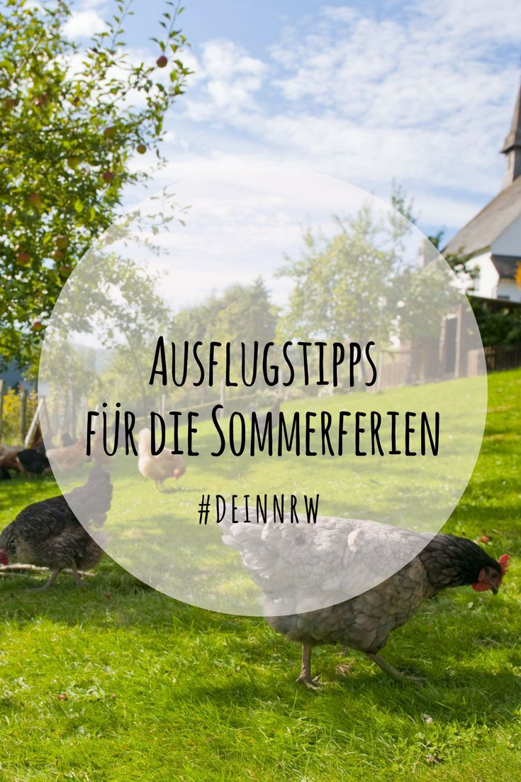 Tipps Fur Die Sommerferien 2019 Ausflug Ferien Und Familienreisen