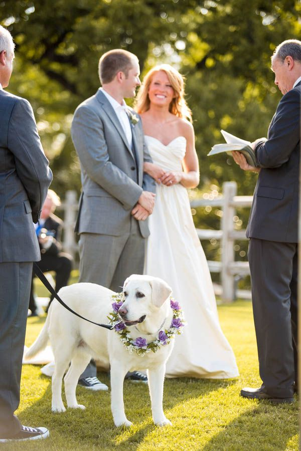 Love that this couple had their dog at their wedding!