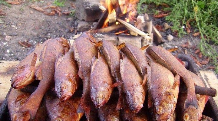 А-ля натурэль. Копчение и другое приготовление рыбы на природе