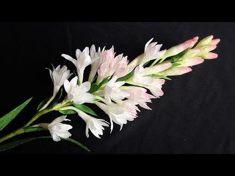 ABC TV |Как сделать бумажный цветок туберозы Из гофрированной бумаги - Craft Учебник - YouTube
