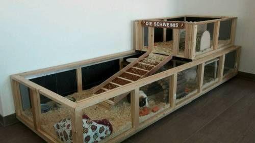die besten 17 ideen zu meerschweinchenk fig auf pinterest. Black Bedroom Furniture Sets. Home Design Ideas