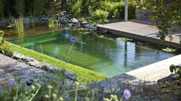 My future swimming pool when I have a gorgeous home.  Biotop natural pools use plants to clean and filter- no need for chemicals.  So AWESOME!
