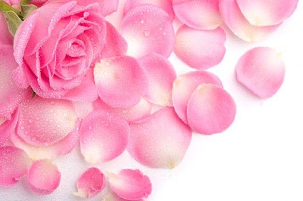 (Biologische) rozenblaadjes door de sla.