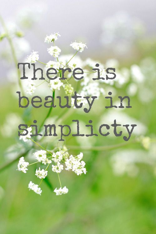 Words of Wisdom - beauty in simplicity!