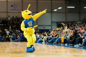 """Sammy the Slug gives away a pizza to hungry fans and the Santa Cruz Warriors """"UCSC Night"""". Photo by Daniel Green."""