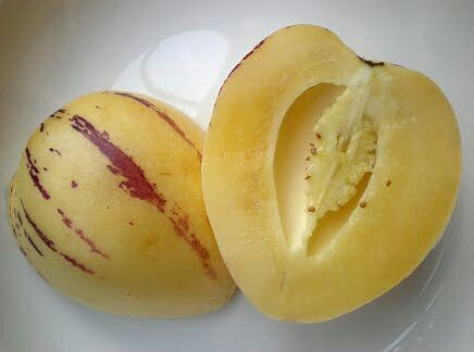 Pepino fruta chilena