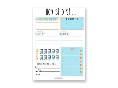 Organizador Diario Lovely