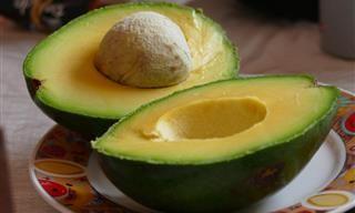 Alimentos Que Ajudam na Perda de Peso | Saúde - TudoPorEmail