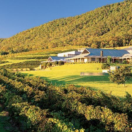 McWilliam's Mount Pleasant Winery #HunterValley #Australia