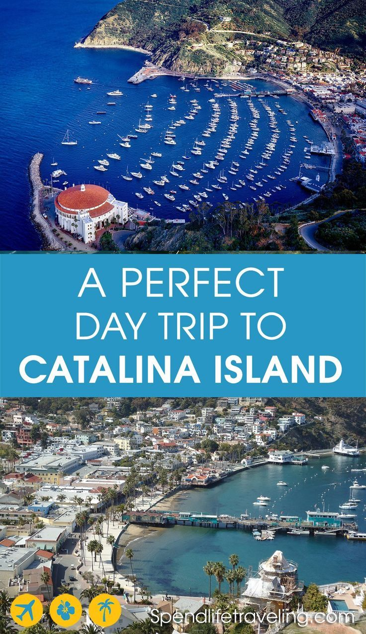 A Perfect Catalina Island Day Trip The Ultimate Guide Trip