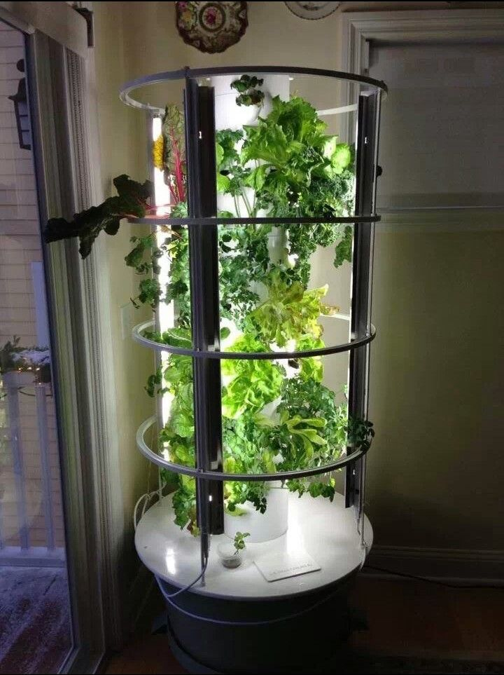 Indoor tower garden with grow lights we took this idea for Indoor gardening machine