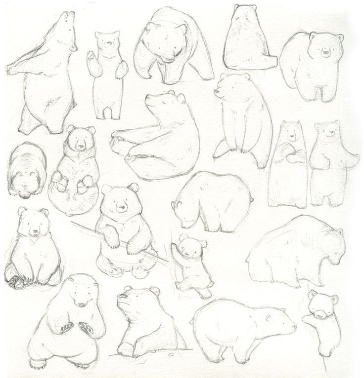 I've been having trouble with bear characters (and since I love those tallee-smallee character relationships, I am forever casting bulky bears in my illustrations) so I drew a page of them.