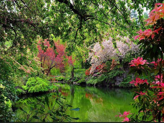 The Butchart Gardens, Isola di Vancouver (Canada)