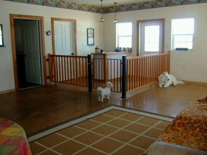 89 best dog room ideas images on pinterest