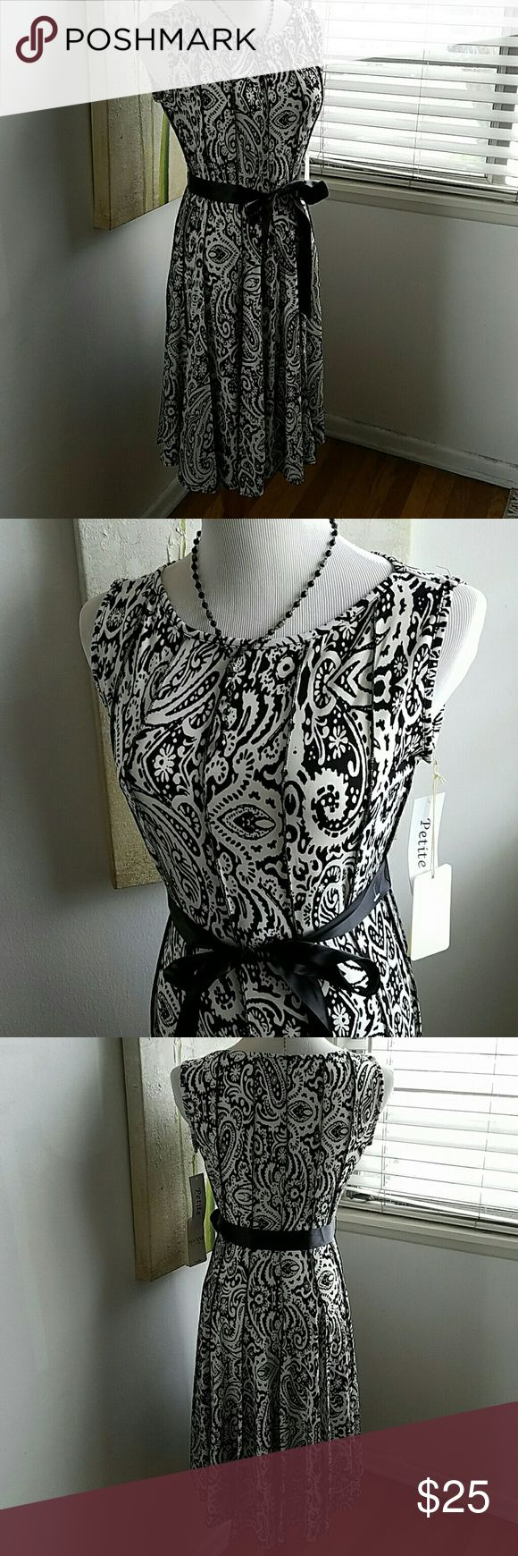 Black and white dress petites medium Black and white fitted dress with a ribbon belt detail stitching Haani New York  Dresses