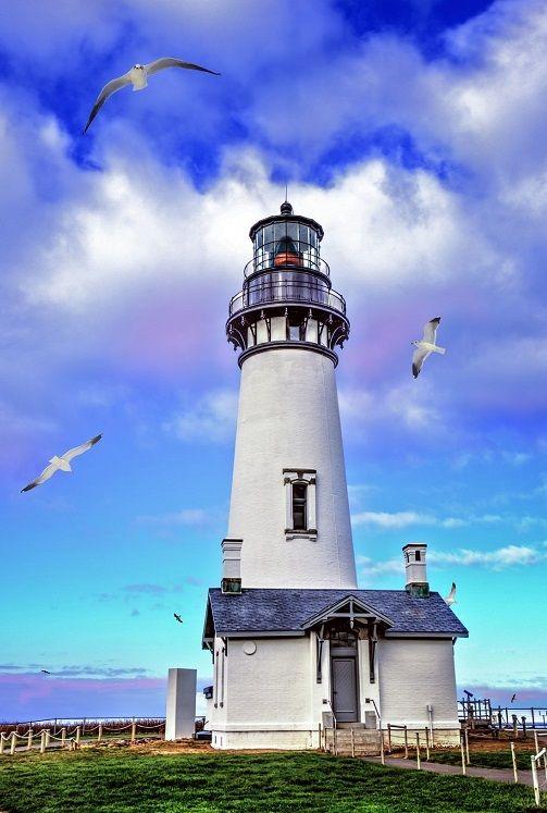 "275jesuss: ""Yaquina Head Lighthouse by Dana Walker. lighthouse, seagulls, coastal, Oregon, Pacific Ocean, Yaquina Head Lighthouse, dananaylorwalker. """