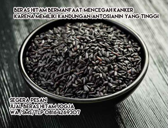 Beras Hitam, Makanan Sehat, Makanan Diet  Head office Jl. Kabupaten Sleman km 5, Kronggahan II, 05/08.  WA +6281.642.693.07