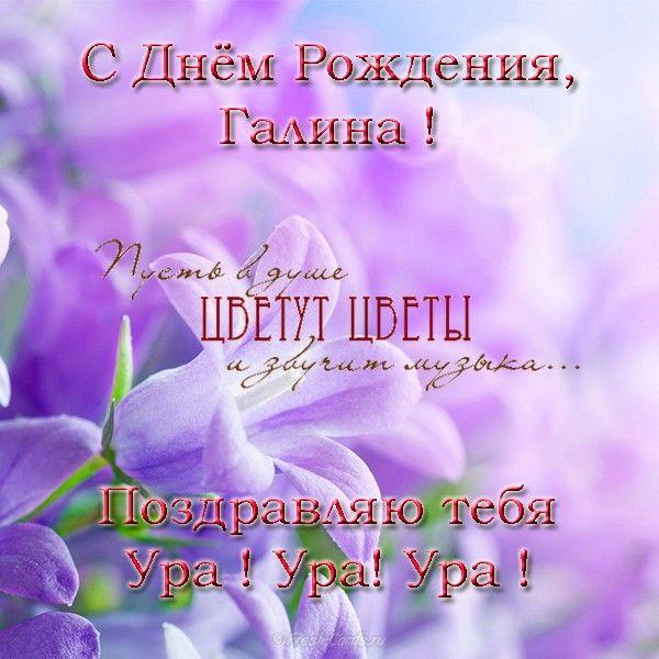 Ромашкой, с днем рождения галину открытки с поздравлениями