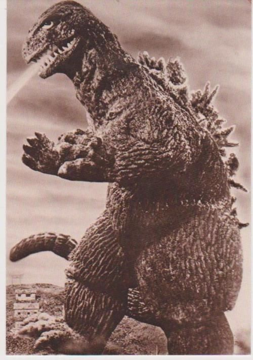 Godzilla from king kong vs godzilla. one of the best godzilla movies but my favourite is probably king of the monsters 1954.