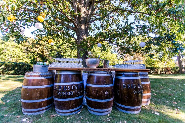 Cocktail hour barrel bar. Paper lanterns in wedding colours in the trees. #wedding #winery #cocktailhour #barrelbar
