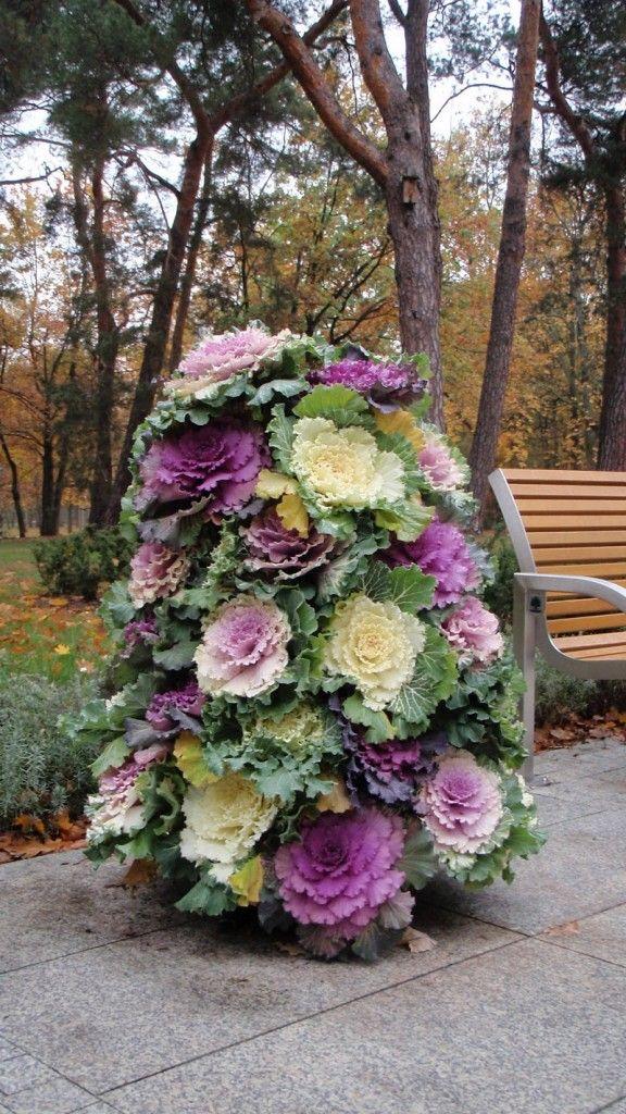 #Autumn #Garden… Flower tower using flowering cabbages. Plant cabbage flowerin