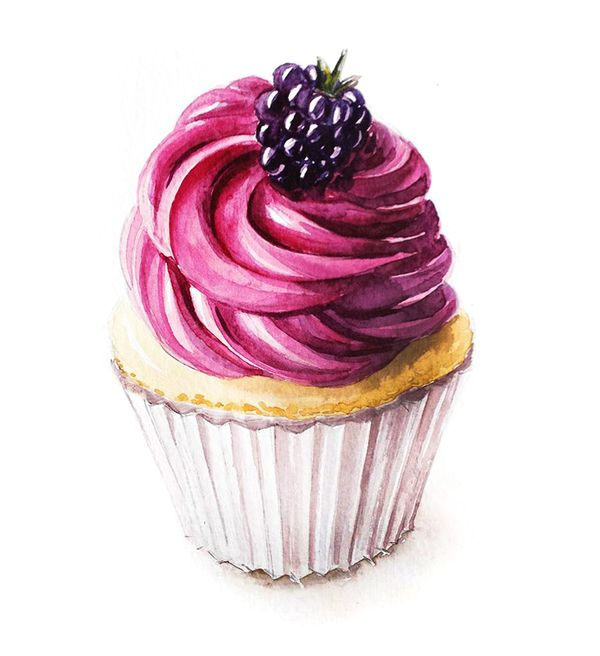 Watercolor berry cupcake on Behance