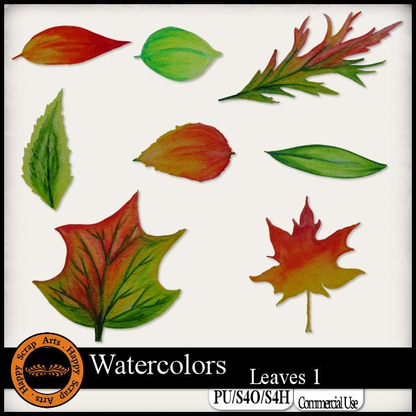 EXCLUSIVE Watercolors Leaves 1 Elements by Happy Scrap Arts