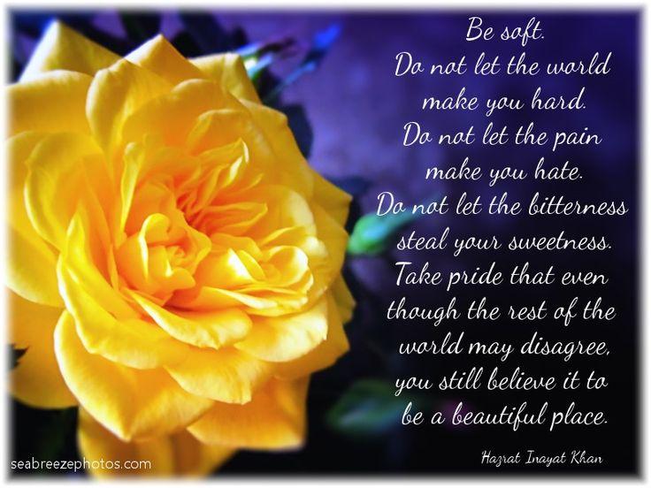 Do not let the world make you hard. Hazrat Inayat Khan