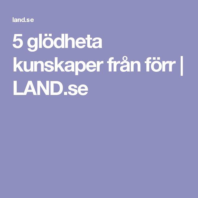 5 glödheta kunskaper från förr | LAND.se