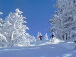 Downhill in Tahoe Ski Resorts
