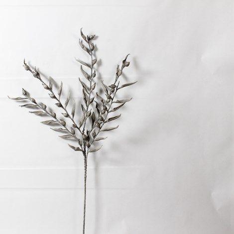 Grey Flower Buds www.lambertpaint.com