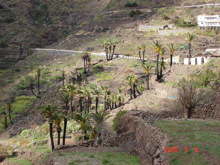 Tenerife - Gomero 2008