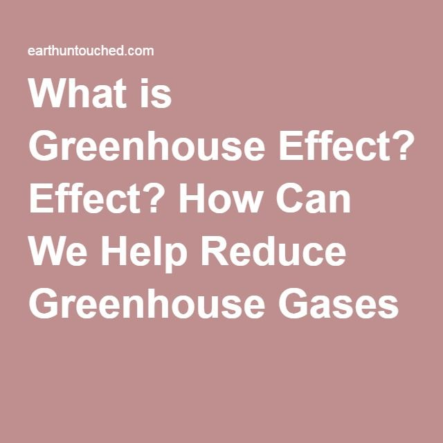 What is Greenhouse Effect? How Can We Help Reduce Greenhouse Gases