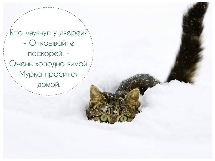 Зимнее стихотворение легко запоминающиеся