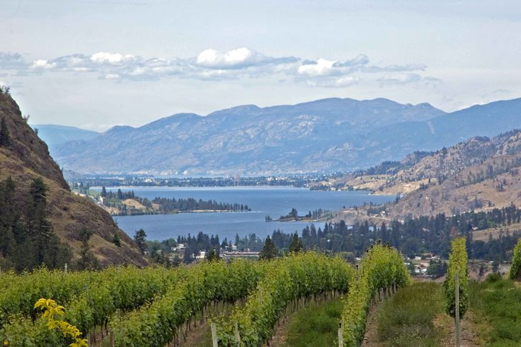 Oliver in the south Okanagan valley
