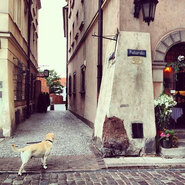 Found on Starpin. #Warsaw