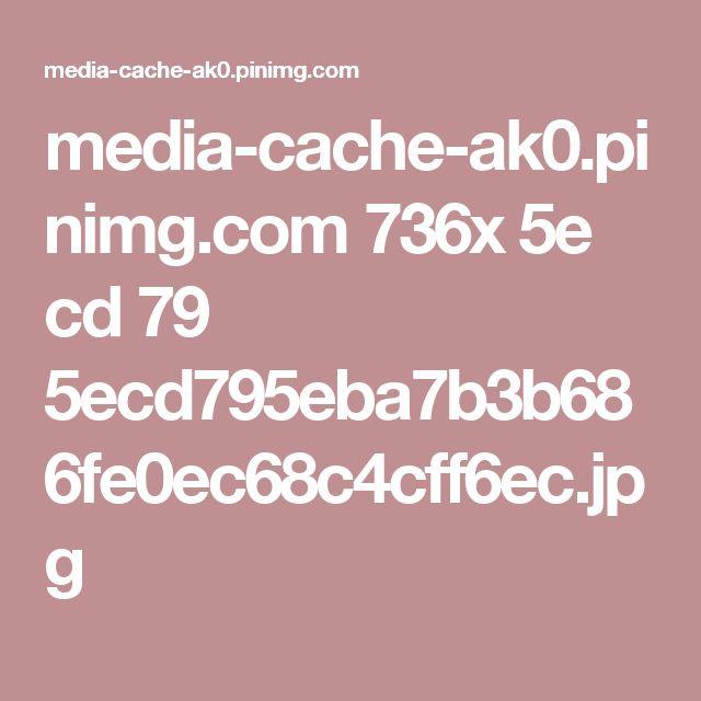 media-cache-ak0.pinimg.com 736x 5e cd 79 5ecd795eba7b3b686fe0ec68c4cff6ec.jpg