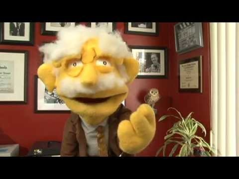Let Professor Hans Van Puppet tell you how good working with the Ten Ten Formula Is, 100% Commissions, Support & Up to date Training click here now ! !  http://www.empowernetwork.com/almostasecret.php?id=thelaptoplifestyle