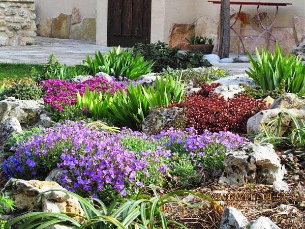 arte y jardinera diseo de jardines plantas bulbosas para jardines de rocalla
