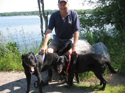 Take your dog to a pet-friendly Ontario park.