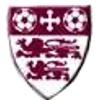 Malvern Town F.C.