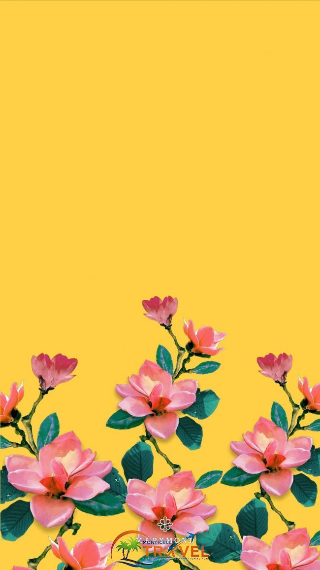 Pin By Meral On Wallpaper In 2019 Pinterest Wallpaper