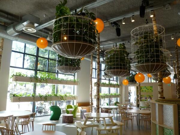 Amazing cafe in Amsterdam with plants suspended from the ceiling