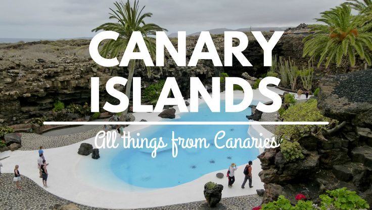 All things Canary Island related