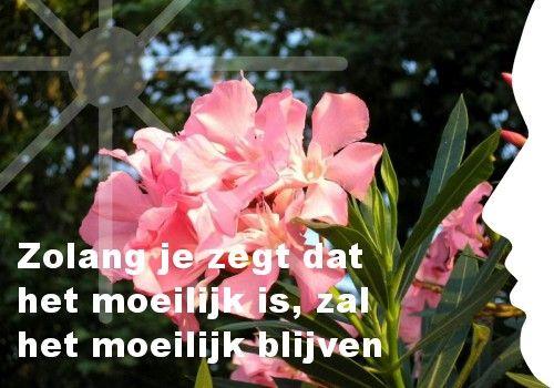 """""""Zolang je zegt dat het moeilijk is, zal het moeilijk blijven."""" Ook je eigen persoonlijke dagelijkse inspiratiekaart ontvangen? http://www.confront.nl/inspiratiekaarten/"""