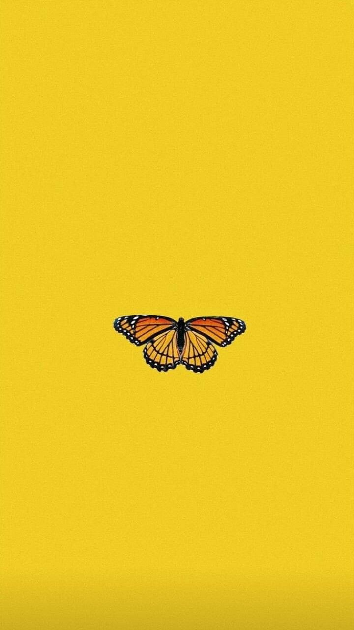 Pin By Kevin Muturi On Yellow Reigns Butterfly Wallpaper Iphone Butterfly Wallpaper Aesthetic Iphone Wallpaper