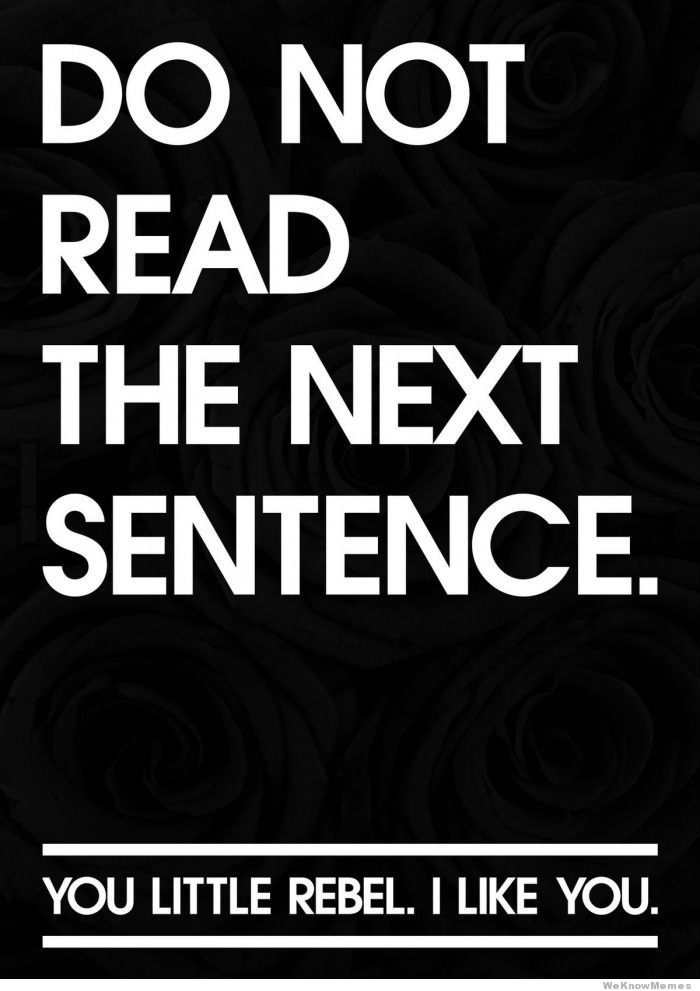 do not read the next sentence. you rebel. i like you. #quotes