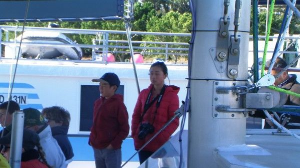 07.07.2014 Whale and Dolphin Watch